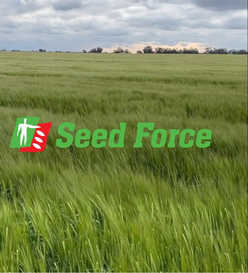 RAGT Semences prend le contrôle de Seed Force en Nouvelle Zélande et en Australie